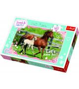 TREFL Pusle 160 Hobused