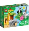 LEGO Duplo Loomabeebid